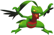 253Grovyle Pokemon Colosseum