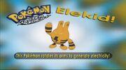 Elekid - Who's that Pokémon.jpg