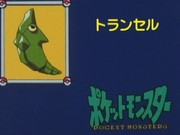 Japanese It's Metapod.png
