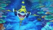 Mega Sharpedo Trailer Anime