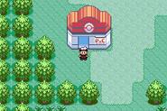 Oldale Town - Pokémon Center (Gen III)