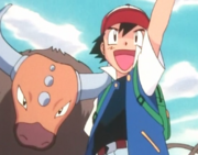 Ash and Tauros