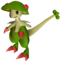 286Breloom Pokémon Colosseum