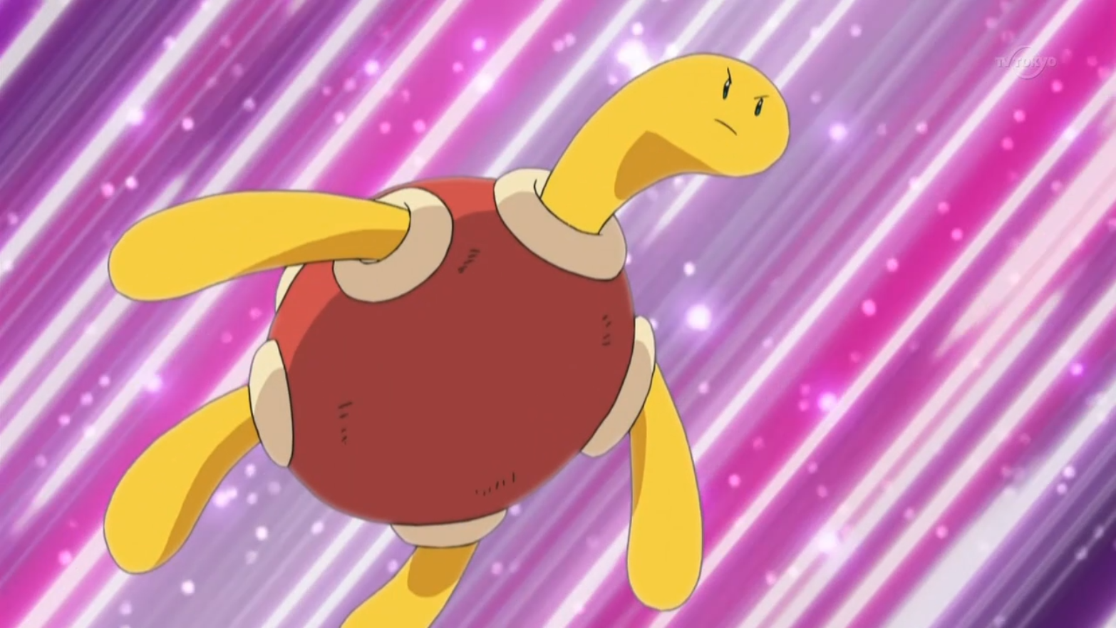 Rebbeca used her Shuckle to battle Zoey's Glameow in the Brussel Town's contest finals.