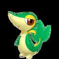 495Snivy Pokémon HOME