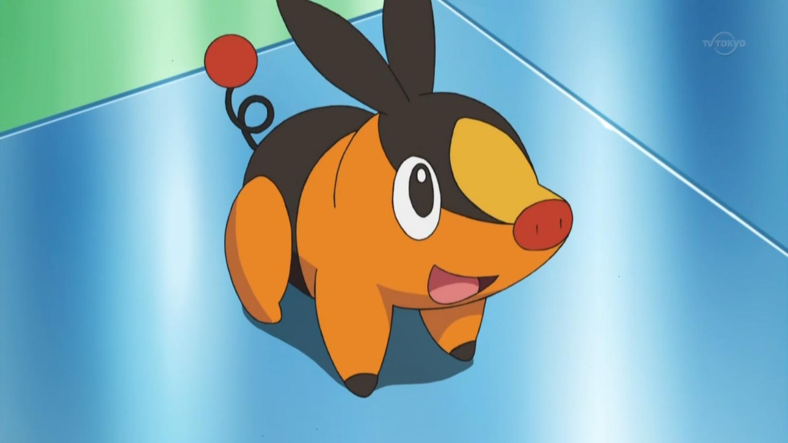 Nanette chose Tepig as her starter Pokémon.