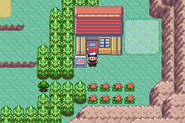 Route 111 - Old Lady's Rest Stop (Gen III)