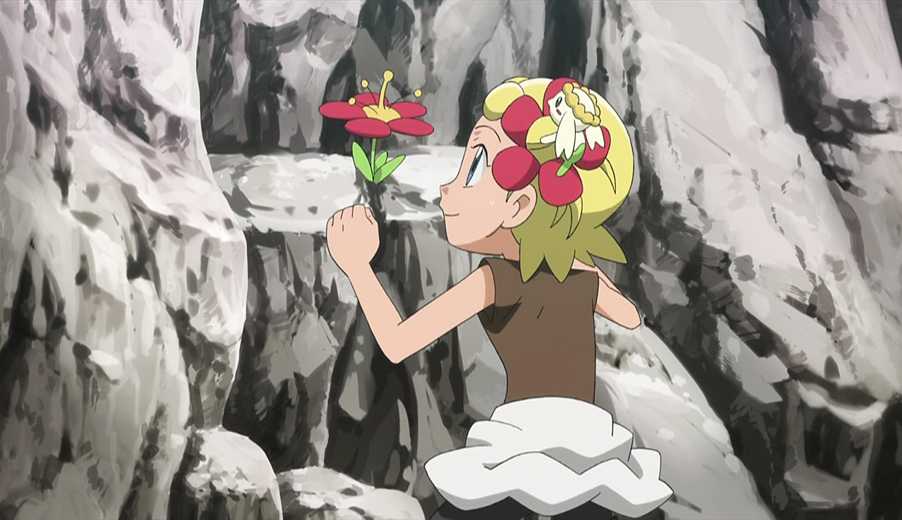 XY026: To Find a Fairy Flower!