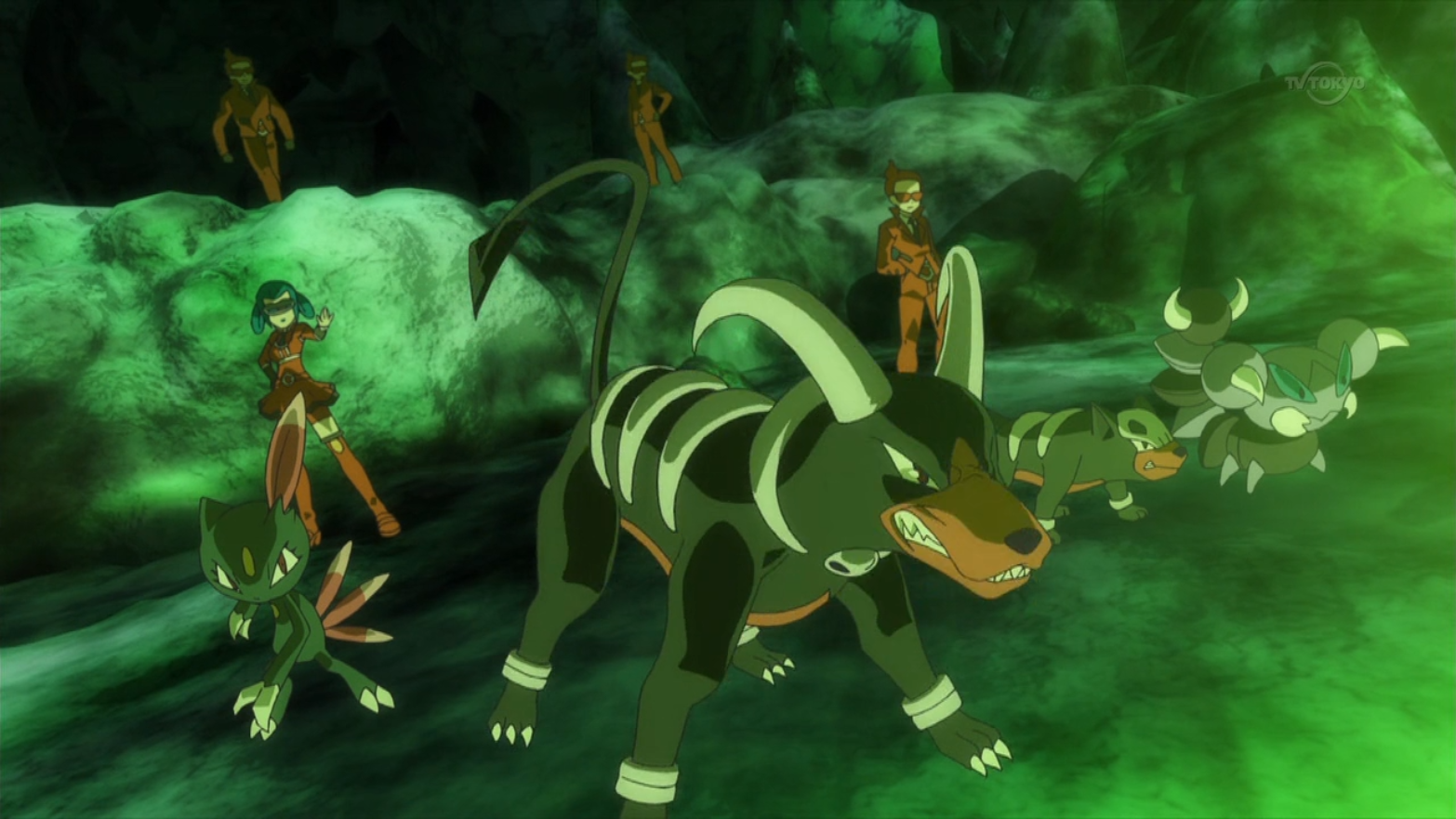 Mable sent Houndoom to battle Z-2, but lost to Zygarde's Land's Wrath.