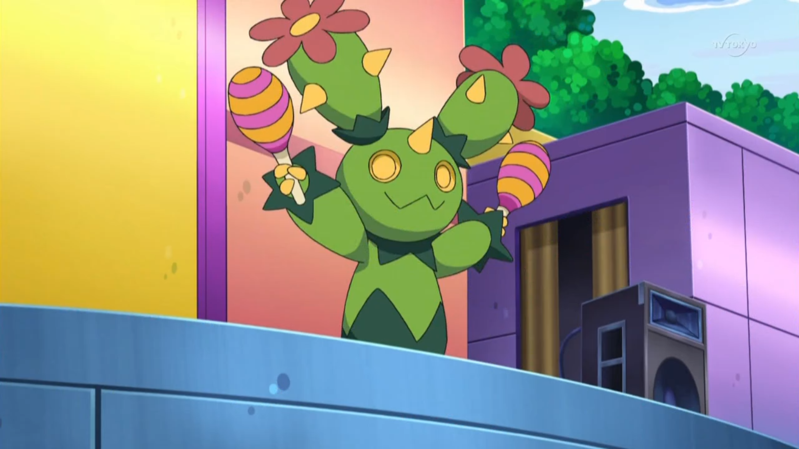 Racca is one of Toby's Maractus, who was used to perform in musicals.