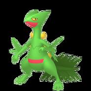 254Sceptile Pokémon HOME