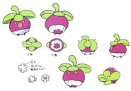 Bounsweet concept