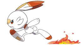 Pokemon scorbunny2.jpg