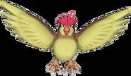 017Pidgeotto Pokémon PokéPark