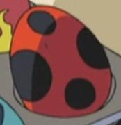 Ledyba Egg