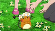 Clemont dedenne flower crown