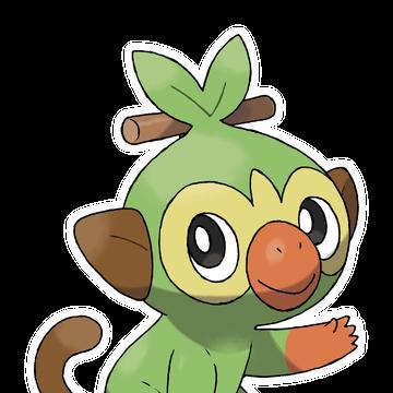 Grookey Pokemon Wiki Fandom Grookey evolves into thwackey at level 16. grookey pokemon wiki fandom