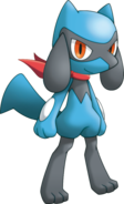 447Riolu Pokemon Mystery Dungeon Explorers of Sky