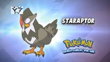 Staraptor- Who's That Pokémon.jpg