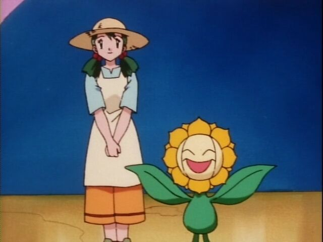 Sonrisa's Sunflora was feeling sad, but when it found Nurse Joy's Sunflora, it felt happy again, so Sonrisa entered the contest with it.