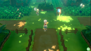 Viridian Forest PE