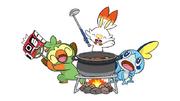 Galar Starters and Pokémon Camp
