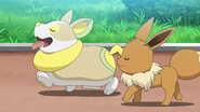 Chloe Eevee and Yamper