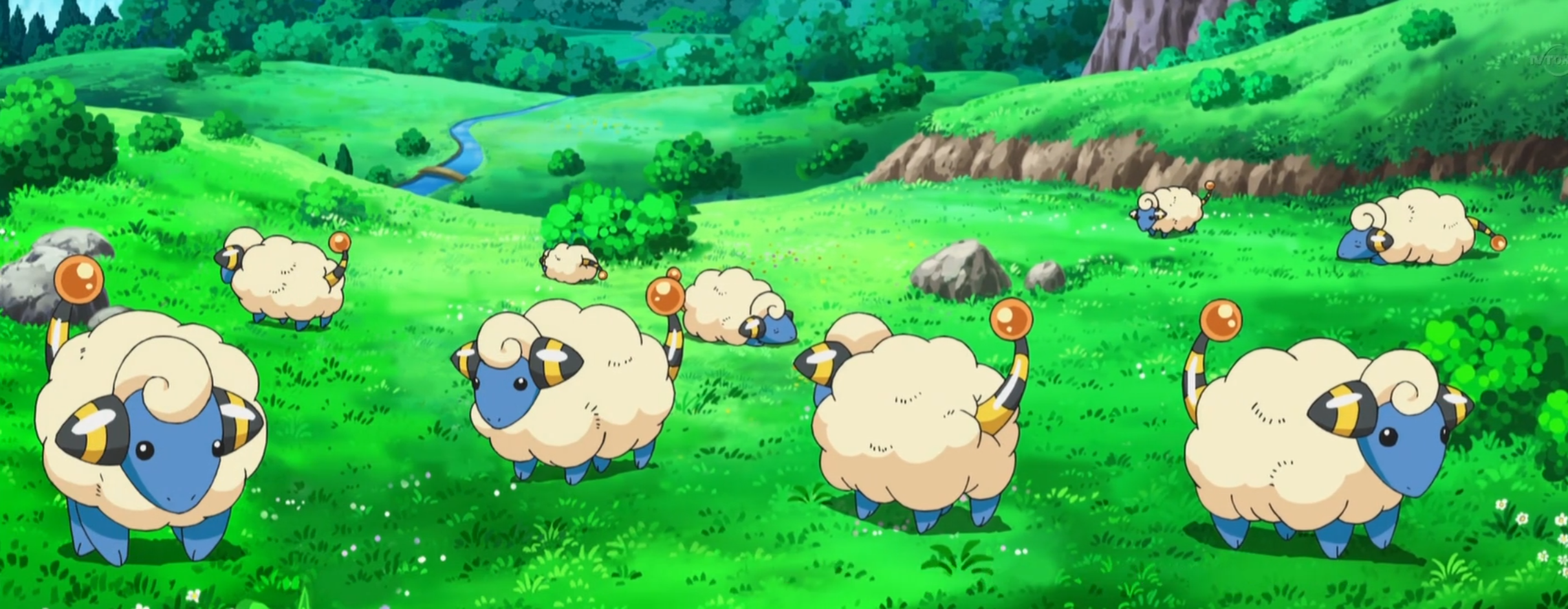 Tokuzō owns a herd of Mareep, using their coat for various products.