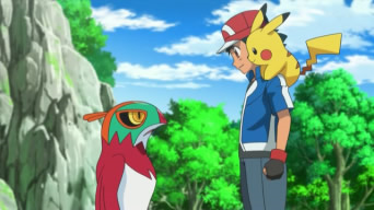 XY034: The Forest Champion!