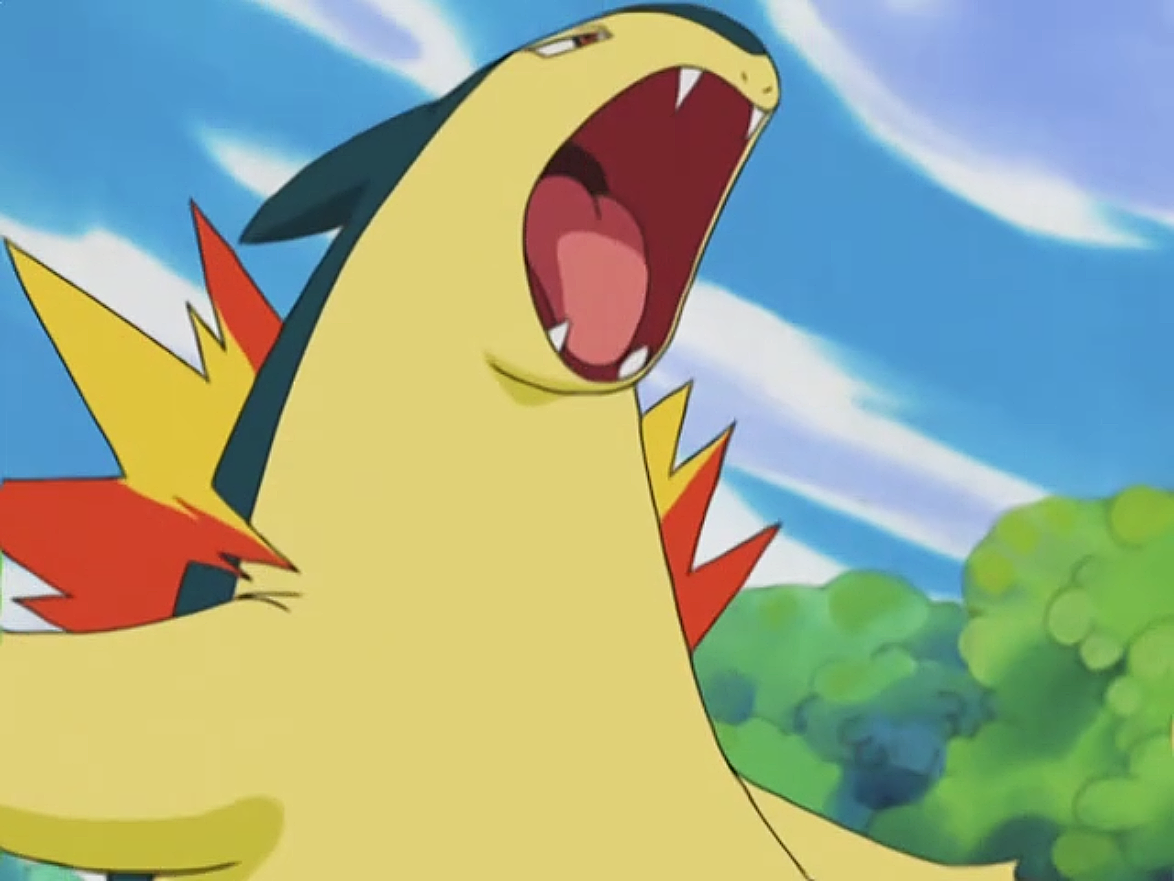 Mr. Moore used Typhlosion in the battles as a Gym Leader.