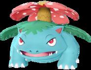 003Venusaur PE