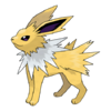 135Jolteon