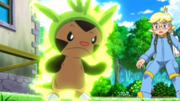 Clemont Chespin Overgrow
