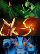 Mega hoenn starters by arkeis pokemon-d7lphnq