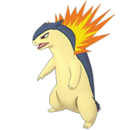 157Typhlosion Masters