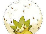 백솜모카 (포켓몬)
