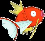 129Magikarp Pokémon PokéPark