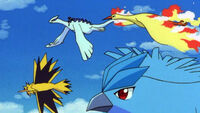 Ash with lugia and the Legendary Birds