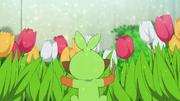 Grookey Gardening Flowers