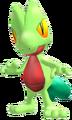 252Treecko Pokemon Channel