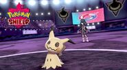 Pokemon-shield-allister-mimikyu