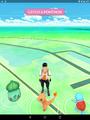 Pokemon GO screen