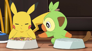 Goh Grookey Eating With Ash Pikachu