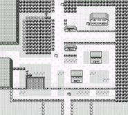 Map of Viridian City Generation I