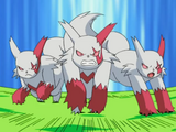 Zangoose (DP053)