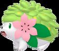 492Shaymin Land Forme Pokémon HOME