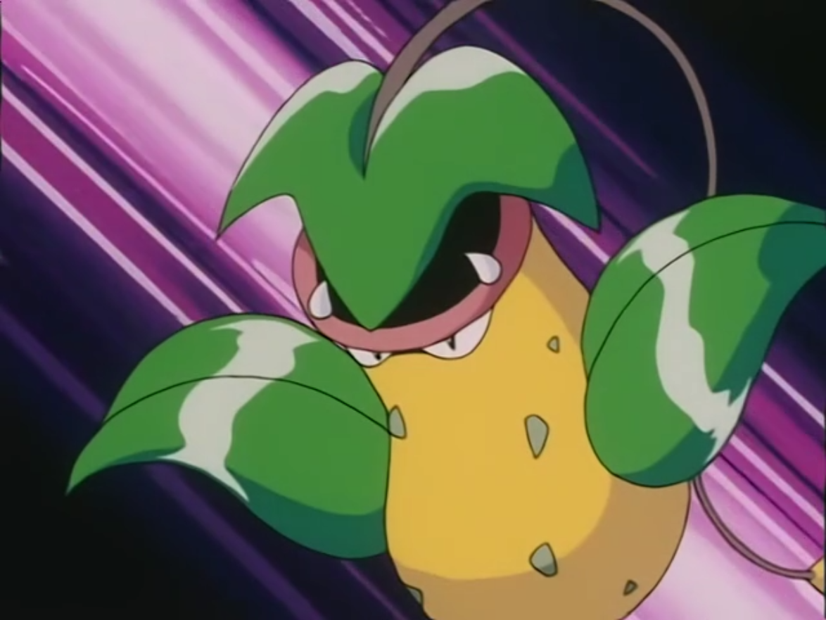 James traded Victreebel for a Weepinbell from the Magikarp Salesman during one of his scams. That Weepinbell evolved into Victreebel soon after, they both were kicked away by their owners and bumped into each other. As a result, they fell in love and ran away together.