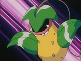 Victreebel (anime)