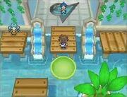 Pokemon-black-2-white-2-water-gym-lily-pads