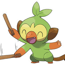 Grookey Pokemon Wiki Fandom Along with scorbunny and sobble, grookey is one of three starter pokémon available at the. grookey pokemon wiki fandom